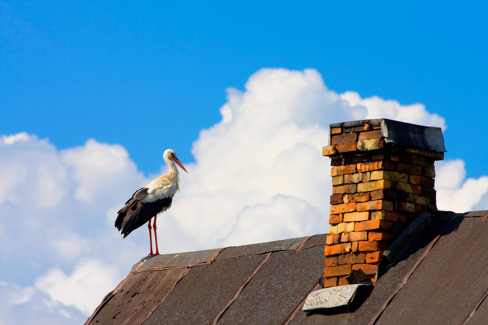 chimney removal cost, avoid chimney repair, masonry chimney safety